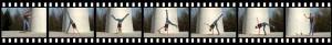 Cara Wilde loves cartwheels!