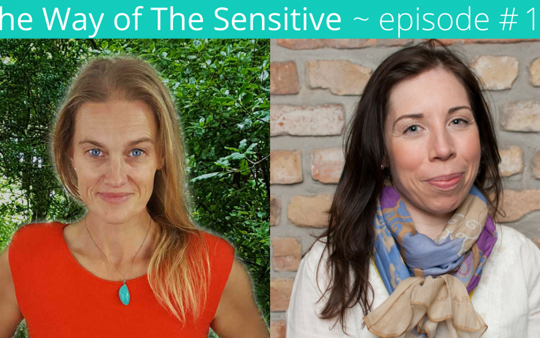 The Way of the Sensitive ~ Episode 18 Transitioning into Authentic Careers.