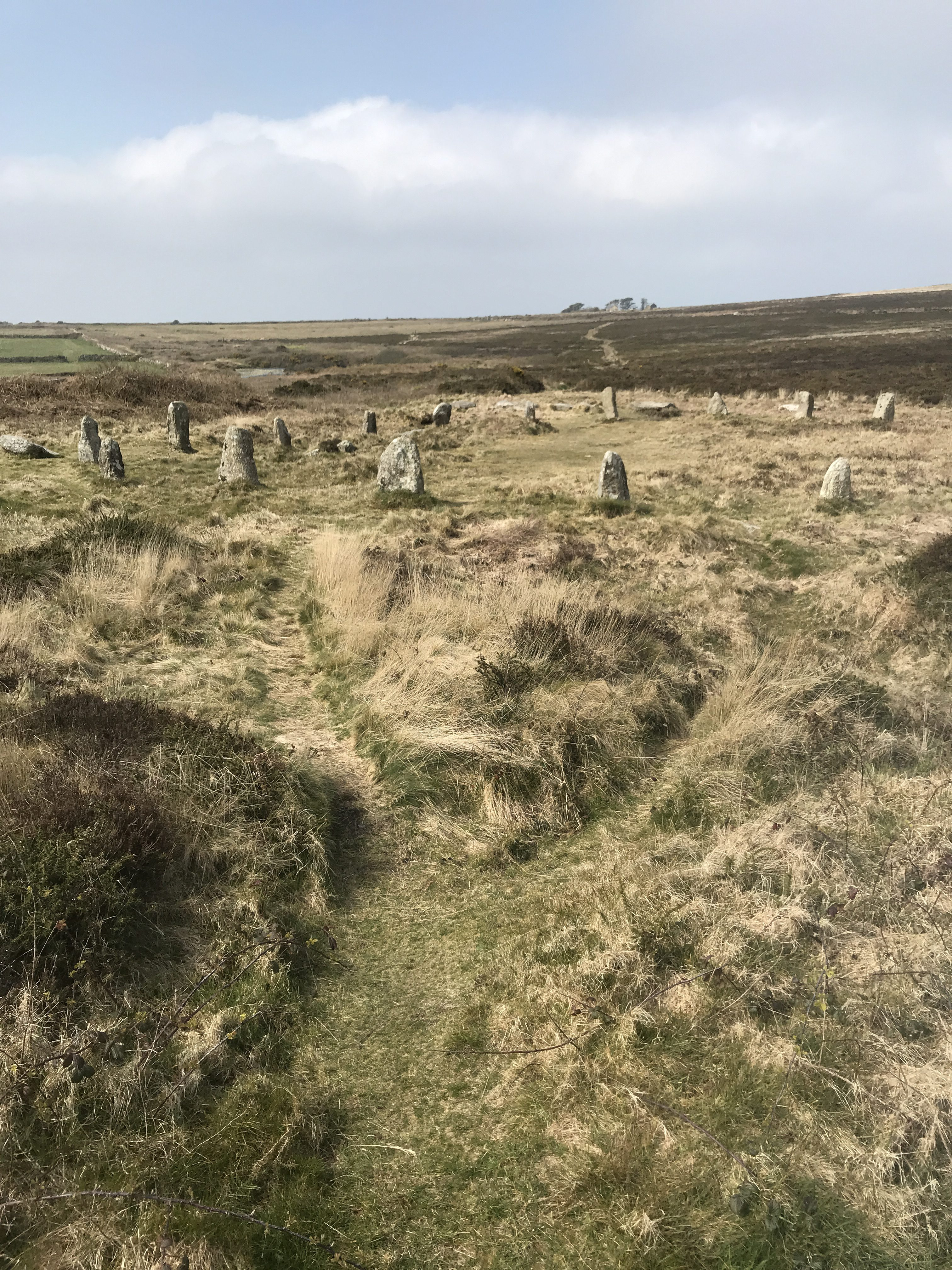 Landscape photo of Stone Circle in green and yellow grass